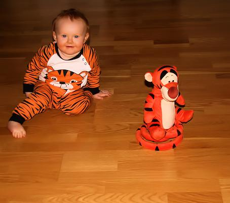 121216_tigrar